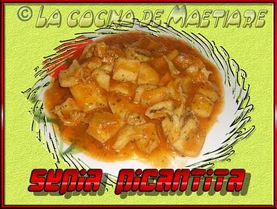 Sepia picantita  CIMG0346