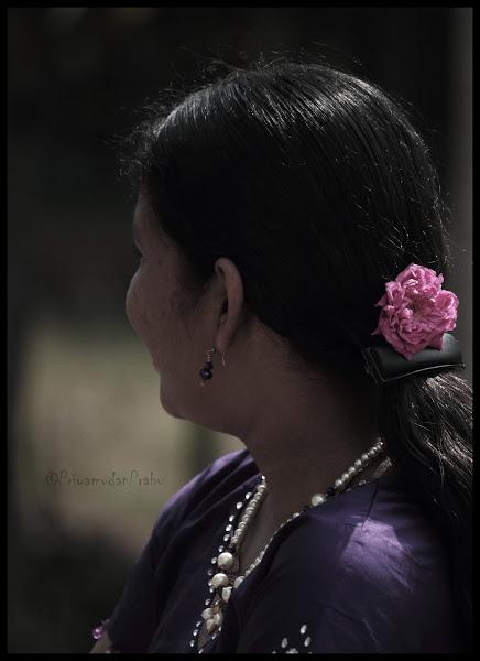 ஒத்த ரோஜா..(ROSE)Photography) Kiruthika
