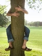 Manaël l'Ardence ♦️ Même sans ailes, j'atteins des sommets. - Page 2 Gi_hug-tree_blog