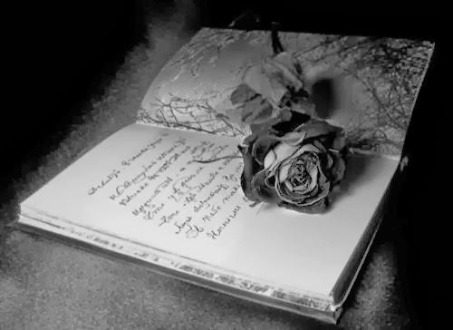 La Rosa Negra Libro-rosa-negra