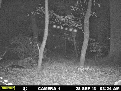 Light Anomalies Captured On Trail Cam Joshua2