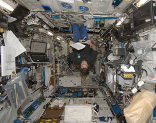 Gravity Does Not Exist! Iss_greg_chamitoff_nasa