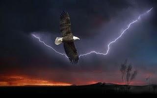 Le Phenix va en guerre Eagle_lightning_sm