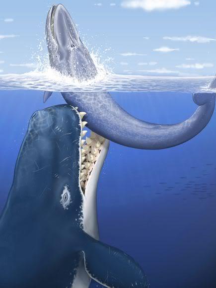 Algunos de los animales más grandes que han existido jamás Leviathan