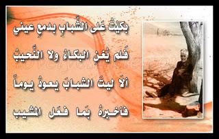 سيوفي العراقي %D8%B7%C2%B5%D8%B8%CB%86%D8%B7%C2%B1%20%D8%B7%C2%A7%D8%B7%C2%B4%D8%B7%C2%B9%D8%B7%C2%A7%D8%B7%C2%B1%20-11