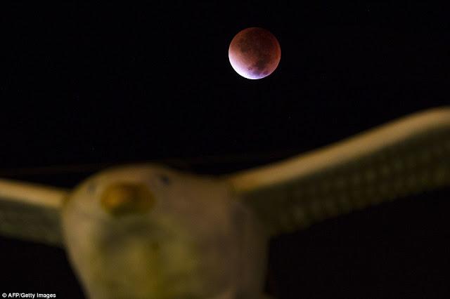 Eclipse.........  2CD8E87200000578-3251497-image-a-88_1443415714046