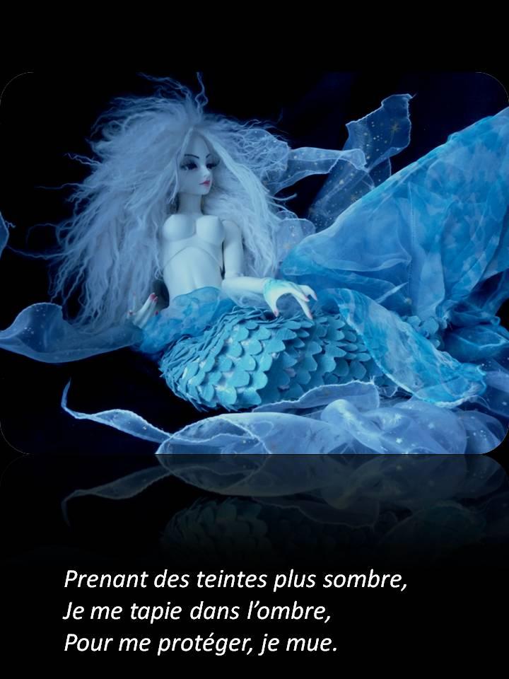 (C)arnets 2 Voyages: Druyes-les-Fontaine (89) p31 - Page 2 Diapositive10
