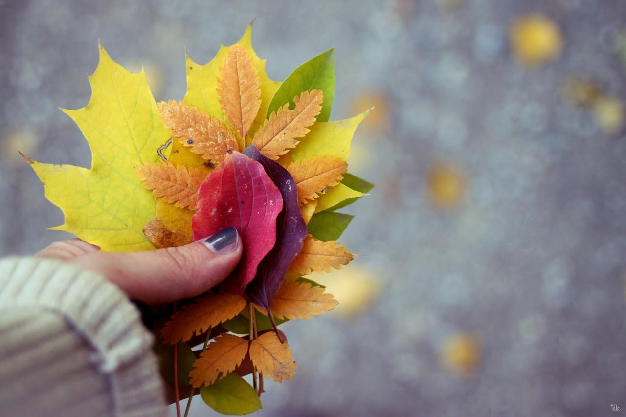 ... Y caen las hojas, llega ....¡¡¡ EL Otoño !!! - Página 10 Tumblr_mc7emdBsVt1qapcamo1_1280