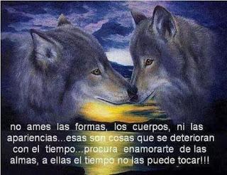 EN EL AMOR NO HAY LUGAR PARA EL DOLOR  074