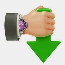 برنامج التحميل الرائع Internet Download Accelerator Pro 6.1.1.1443 Final Index