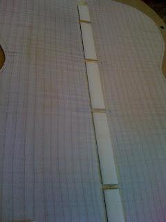 VIDÉO EN LIGNE: OM Englemann/érable ondé à grande feuille - Page 2 IMG_1146
