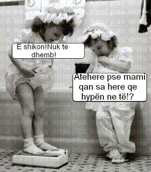 Foto humoristike ne pergjithesi - Faqe 35 524918_10151104886343564_1046522942_n