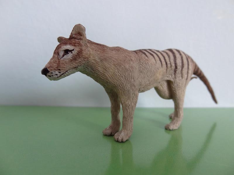 The wonderful Thylacine female by Joan 012