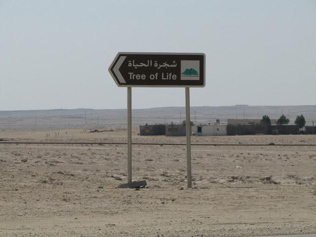 El Árbol de la Vida en el desierto de Bahrein 270580506_d903be1605_b