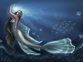 حورية البحر بين الحقيقة والخيال  Ll