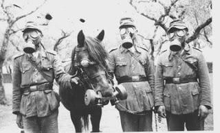 ABHO Horse_gas_mask_hk