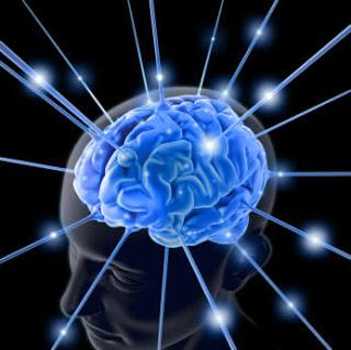 العقل البشري والغرور والكبر  Brain