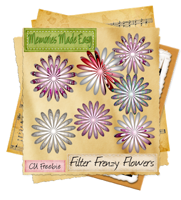 Filter Frenzy Flowers (Memories Made Easy) MME_FilterFrenzyFlowers_PREVIEW