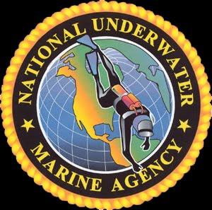 Numa Numa_logo