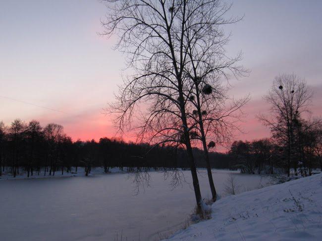 Coucher de soleil sur l'étang gelé %25C3%25A9tang%2B%252810%2529