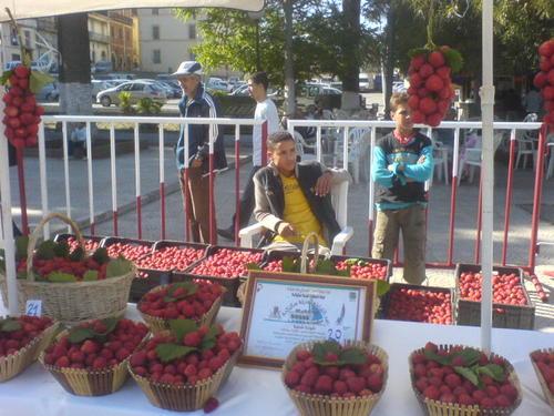صور لمدينة سكيكدة الجزائرية 7