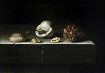 Mes natures mortes préférées Coorte-Coquillages-Louvre1
