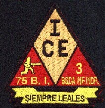 Historia y descripción del I.C.E. (Primer Cuerpo del Ejercito) Sedena75BI