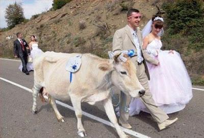 عرسان اخر زمن Funny_wedding_pictures_83
