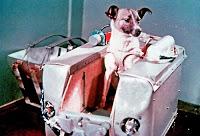guerra - Curiosidades de la guerra fría: la URSS Laika_2