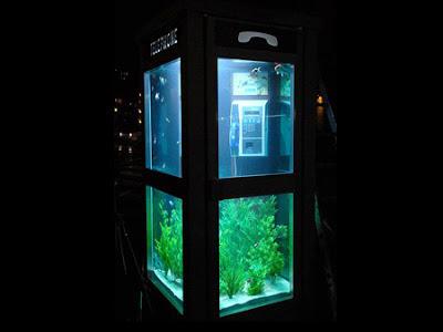 Cabina telefonica o acuario? 2009_02_23_aquarium_phone_booth05