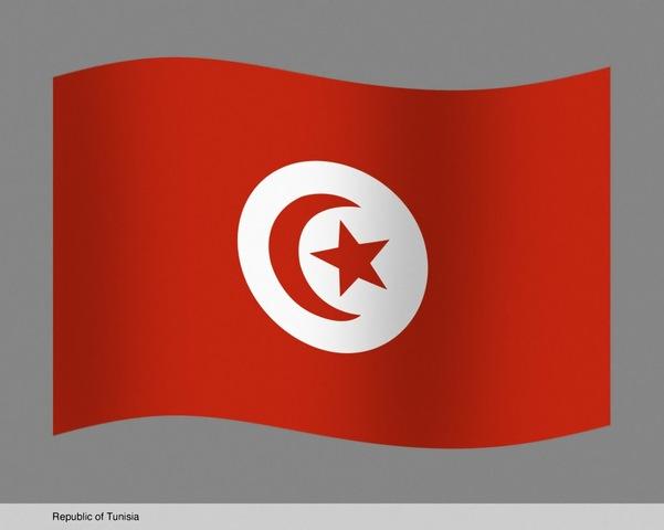اكلات تونسية بالصور  Is204265en8