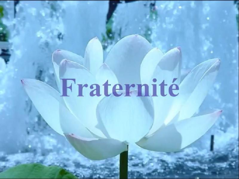 Samedi 1er Janvier 2011 Fraternite
