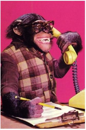 Cuffie Superlux HD668B, mai più senza! Secretary_monkey_on_the_phone