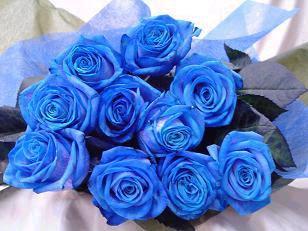 Per a Pantera. - Página 2 Blueroses