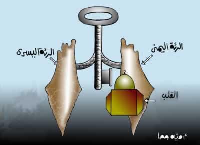 منتديات الدوايمة .كاريكاتير اليوم  - صفحة 3 14