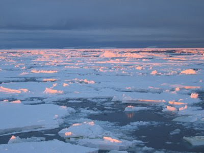Fotografije zimi/e ,leda i ledenjaka - Page 2 Globalno_zatopljenje