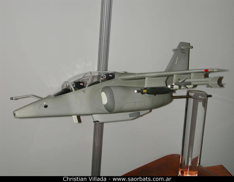 "IA-63 PAMPA III/GT -2º Parte- ""Lo que se viene"" Aeron5_DSCN9819_jpg"