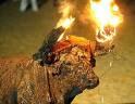 En España sí existe la pena de muerte Toroembolado
