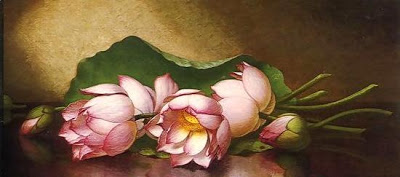 தயவு செய்து பதில் எழுது Egyptian-Lotus-Blossom