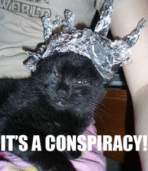 MAESTRO LILYHILO IS SEEKING FOR YOU AT THE BALL PLACE! Tin-foil-cat