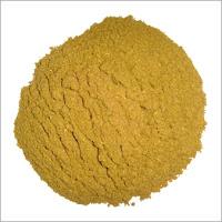 Plantes aromatiques, graines, noix, légumes, poissons, épices ... dans la Cuisine Marocaine Cumin-Powder