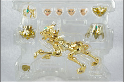 [Comentários] Saint Cloth Myth EX - Soul of Gold Aiolia de Leão - Página 9 SxXEROVZ