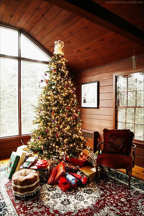 Božićna drvca - Page 3 Tumblr_ndn785aDpK1u16mbco1_500