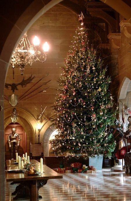 Božićna drvca - Page 3 Tumblr_ndowuoZve61ri86b6o1_500