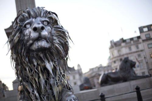Löwenplakat zum Theater Festival San Javier  Tumblr_o1omntI6j91s3hp12o3_500