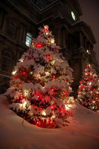 Božićna drvca - Page 3 Tumblr_nztfm0r3ja1ti4wako1_400