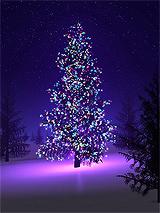Božićna drvca - Page 3 Tumblr_mxgni8Gi701rmvs4co2_250