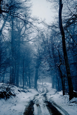 Pics of places that look like places from the films, or are just nice. [3] - Page 4 Tumblr_np73a7U8rX1t615zjo6_250