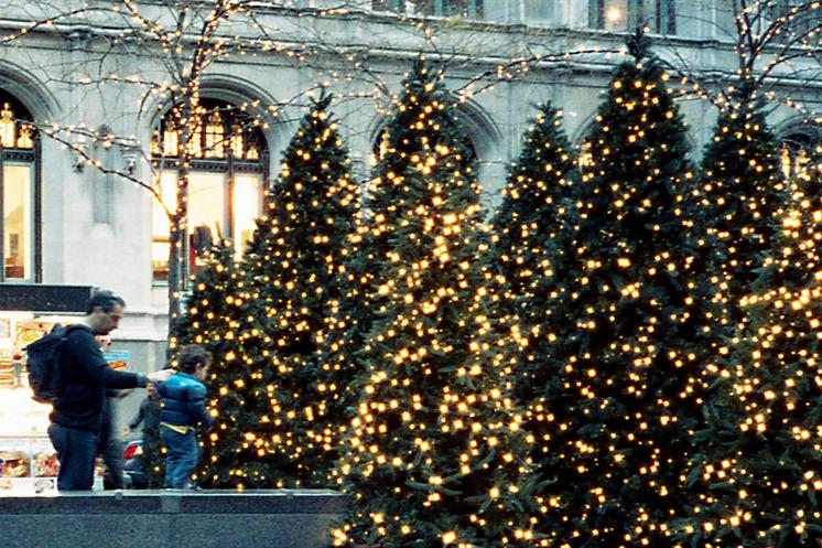 Božićna drvca - Page 2 Tumblr_mvyr9t9CCw1rf7thqo1_1280