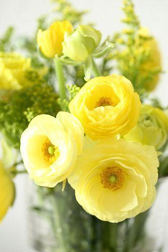 Volim žuto - Page 18 Tumblr_n7vlyaNyXE1sg22dvo1_400